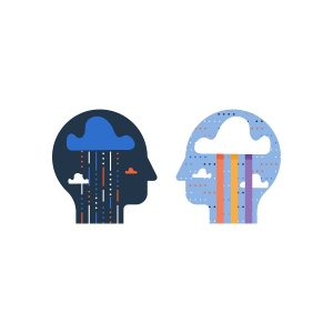The Differences Between Borderline Personality Disorder and Bipolar Disorder