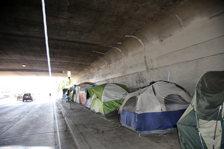 Is LA's Homeless Crisis Fueled By Mental Health and Addiction?
